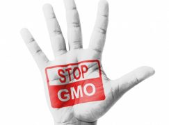 Vermont Passes Law Requiring GMO Labeling
