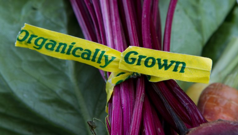 Results Are In: Organic Foods Healthier Than Conventional