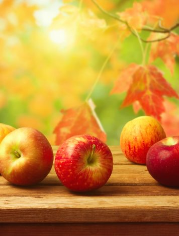 Why Apples? + A Healthy Recipe