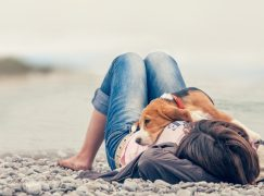 Unconditional Love – As Taught by the Four-Legged Masters