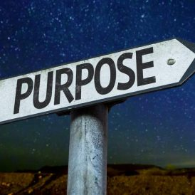 Discover Your Higher Purpose