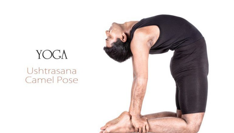 Asana From Every Angle: Camel Pose