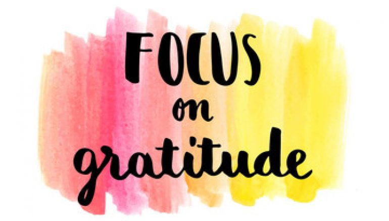 Finding Gratitude Amongst The Chaos