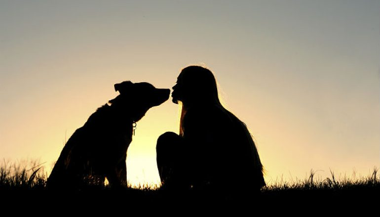 4 Life Lessons You Can Learn From Your Dog