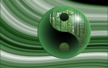 Yin & Yang: Embracing Opposites
