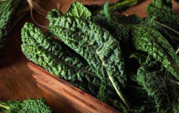 Warm Kale Slaw
