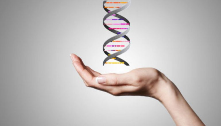 Epi-what? Change your internal landscape part 2: Epigenetics and how it reduces depression and increases longevity