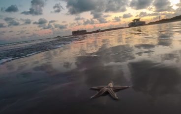 Time for a Texas Coastal Escape?