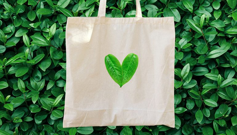 Health is Wealth in July: Our 6 Favorite Items for Conscious Consumers